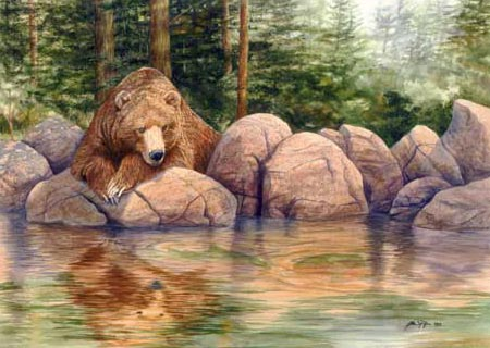 grizzly bear watching fish
